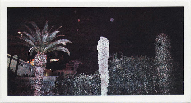 dirty photos - umbra - a night street photo of three plam trees in crete