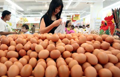 harga telur ayam ras terbaru
