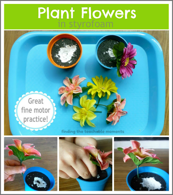 Finding The Teachable Moments Flowers In Styrofoam Fine