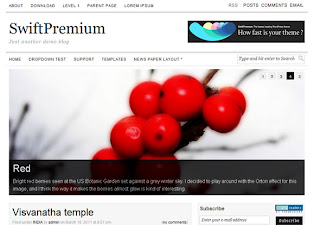 Versatile SEO Wordpress Template - SwiftPremium