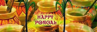 Happy Pongal 2016 Facebook Timeline Covers Banner Free Download