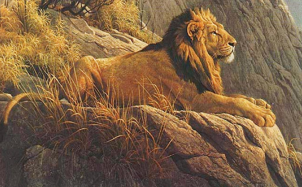 paisajes-realistas-de-la-selva-con-animales