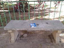 Quem mexeu no meu queijo? Foi deixado na Praça Alcio Souto - Lagoa - RJ