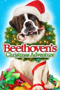 Watch Beethoven's Christmas Adventure Online Free in HD