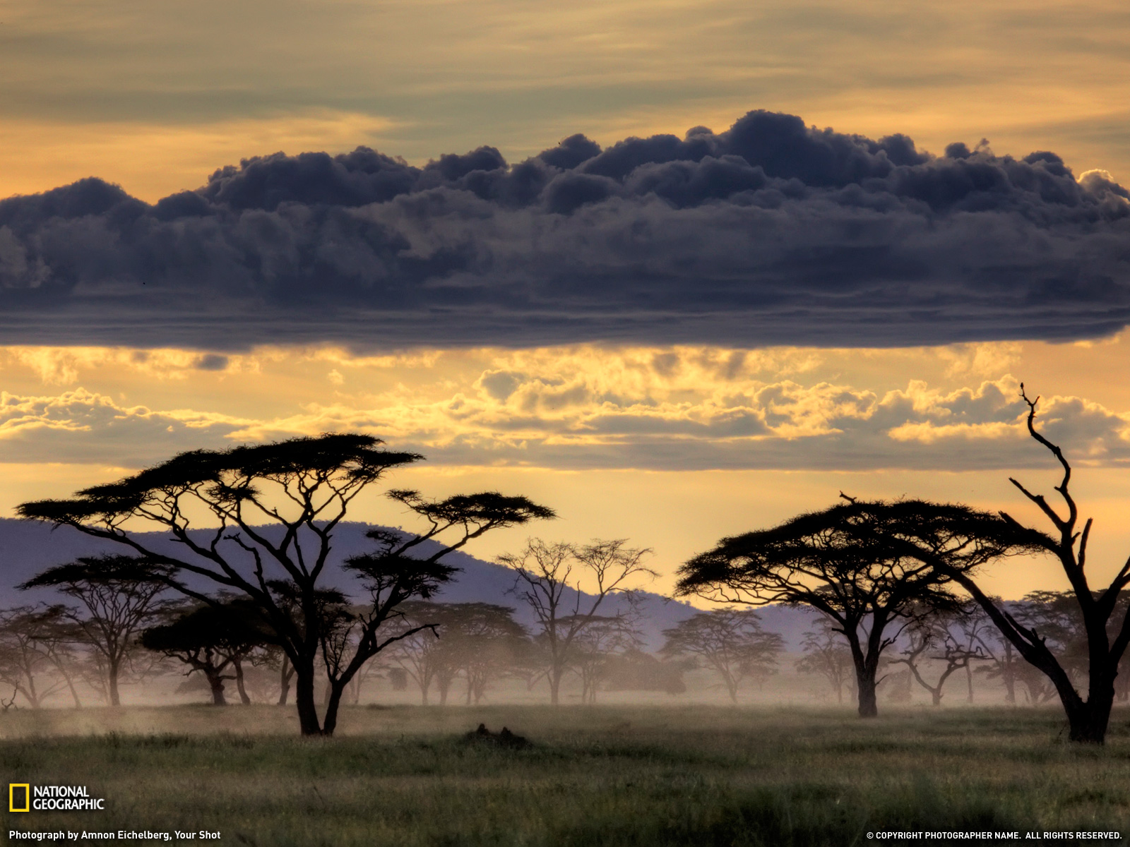 geography nature africa and america This article treats the physical and human geography of africa, followed by discussion of geographic features of special interest for discussion of individual countries of the continent, see such articles as egypt, madagascar, and sudan.