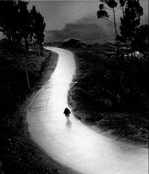camino sola