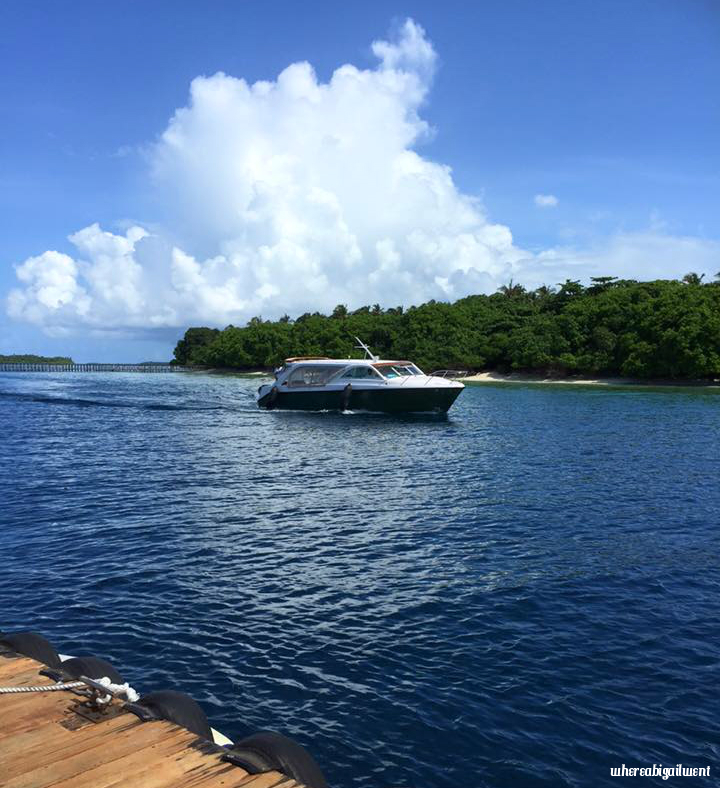 Amilla Fushi Speedboat Transfer