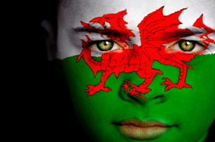 Face Paint Welsh Flag