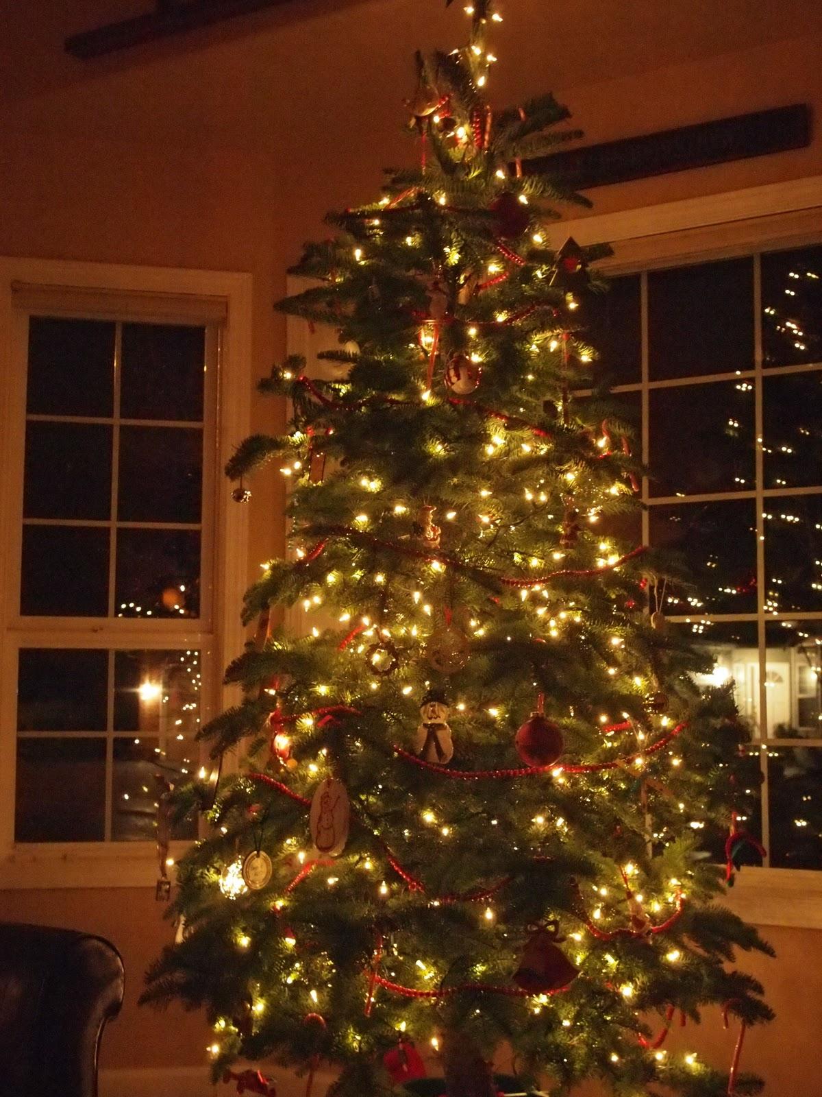 O Christmas Tree: house beautiful christmas trees