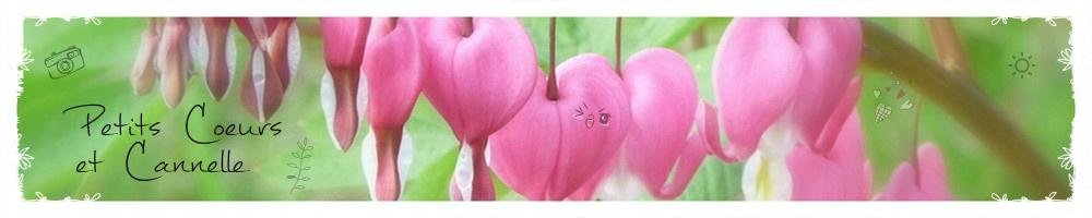 Petits Coeurs et Cannelle
