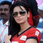 Sexy South Indian Beauties At The Celebrity Cricket League (CCL) 2013