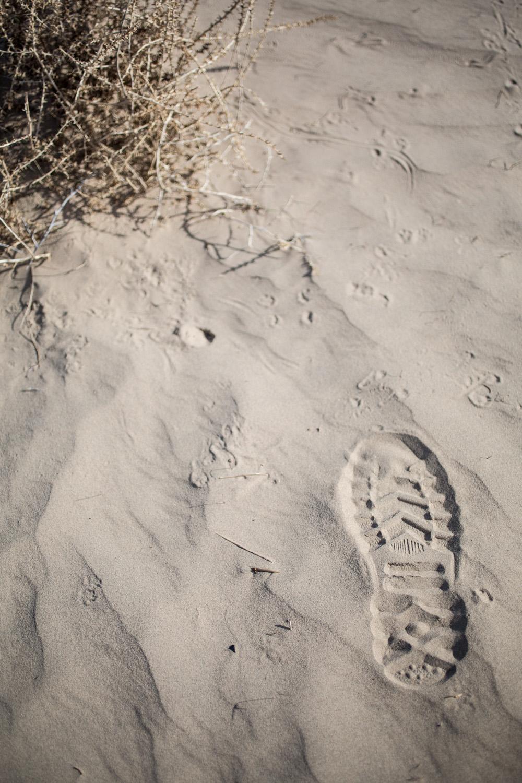 Palladium Boot footprint in the sand