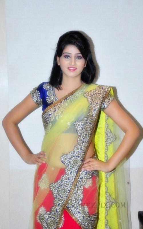Shamili agarwal in designer saree at Desire exhibition and Sale 2013 in Hyderabad