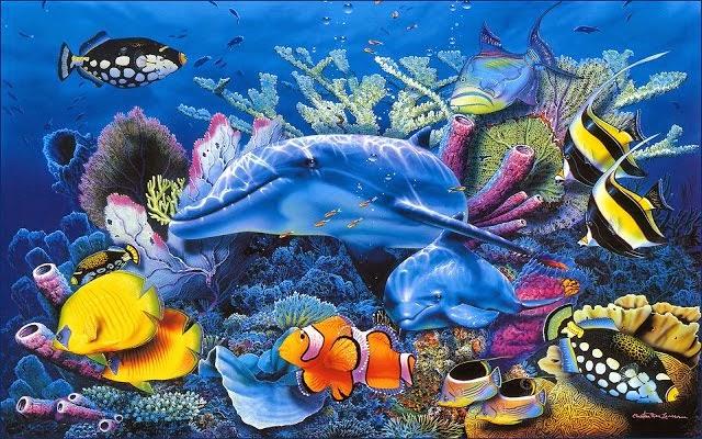 Por qué son importantes los arrecifes de coral? | Bienvenidos al ...