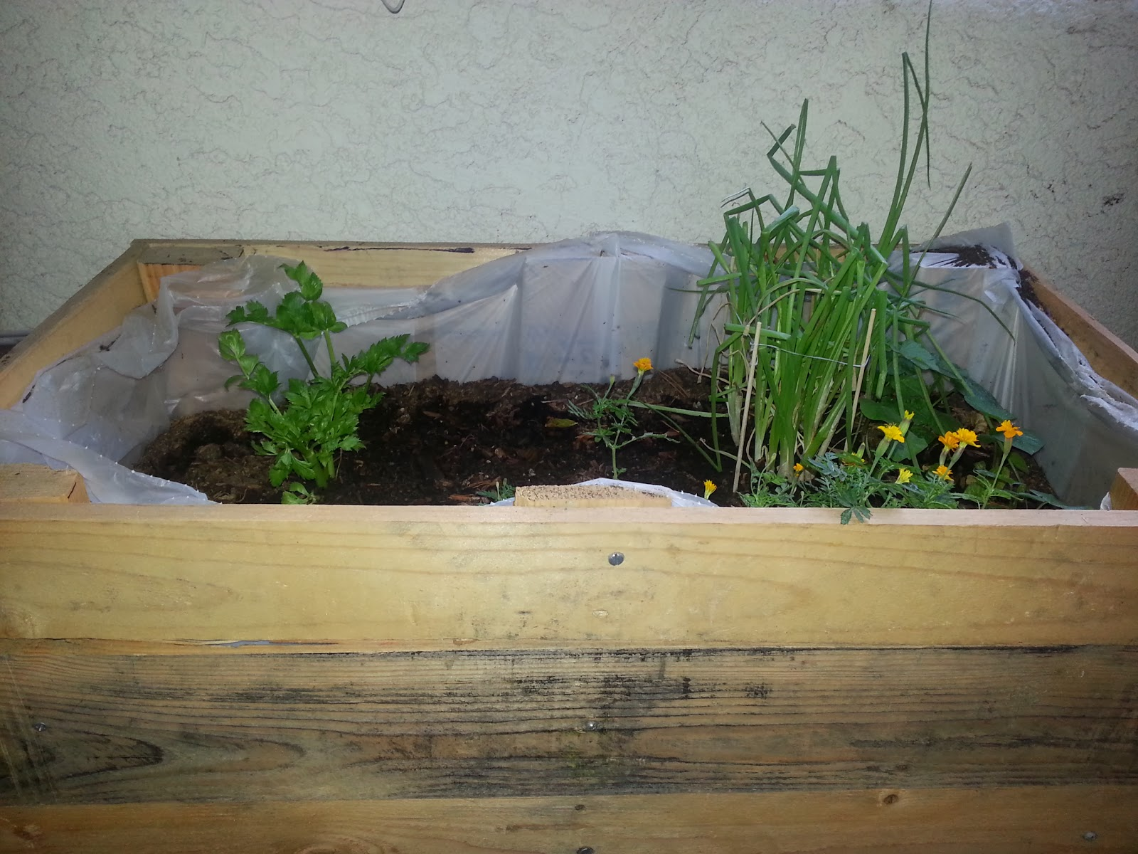 Katie 39 s pantry partners how to build a patio planter box for How to make a planter box out of pallets