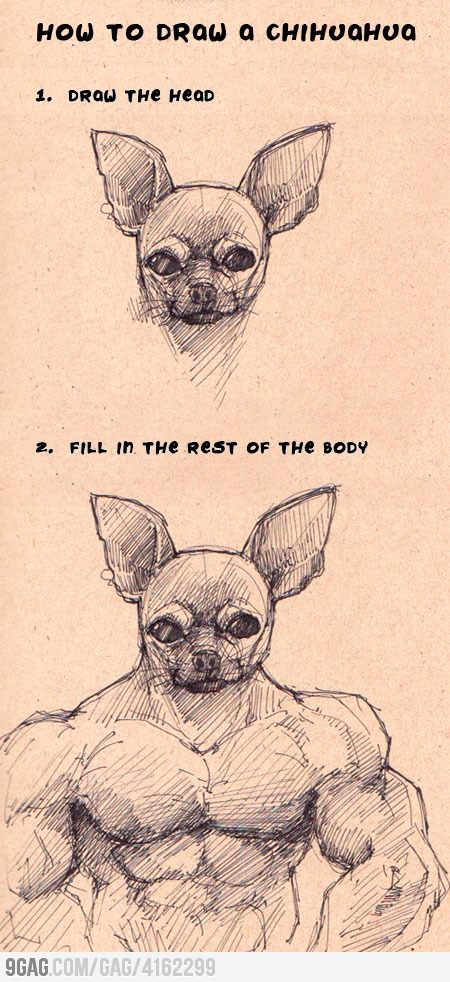 HOW-TO draw a chihuahua