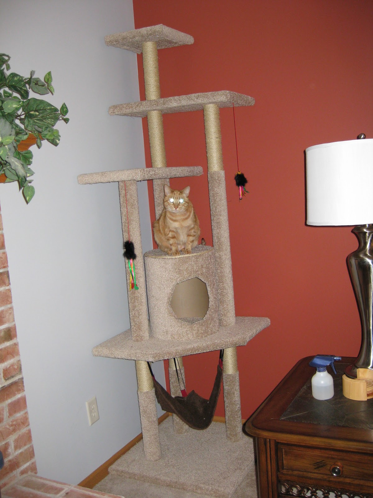 Pickle perfect how to build a cat tree for Cat climber plans
