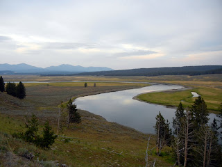 Hayden Valley in Yellowstone National Park in Wyoming