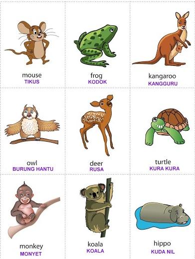 Flash Card Belajar Bahasa Inggris Tema Binatang Untuk Anak Paud Tk Dan Sd File Wikiedukasi