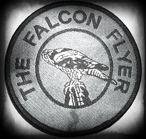 Falcon Flyer 2013