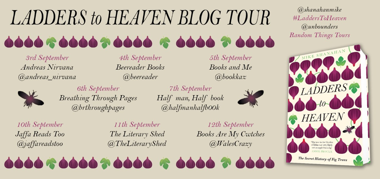 Ladders to Heaven Blog Tour