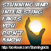 Stunning Facts on Facebook