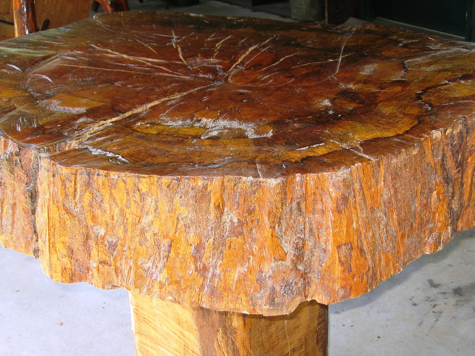 Terry O 39 Neal Tree Trunk Coffee Table