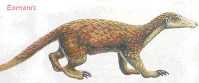 Pholidota extinta Eomanis