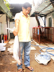 cá câu dưới hồ 4,5Kg