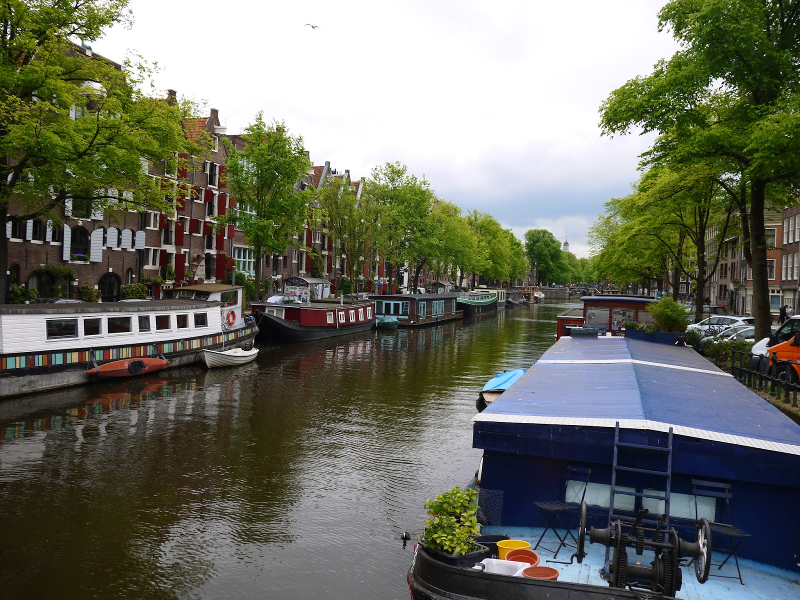 Discover Dutch culture by Appetit Voyage