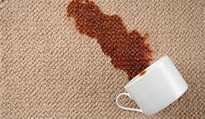 Muebles inteligentes como limpiar alfombras con productos for Limpiar alfombras amoniaco