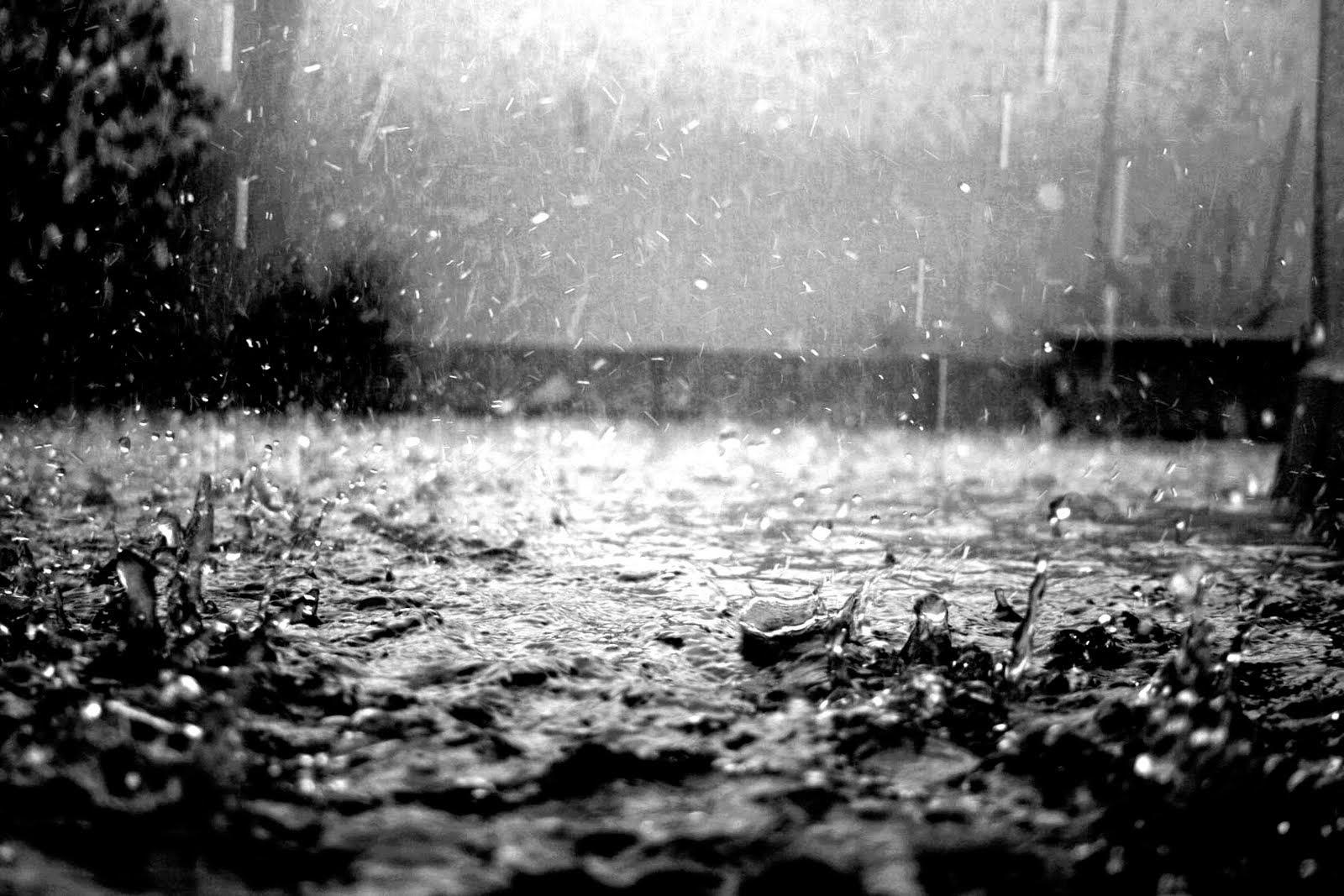 Las gotas de lluvia | Bienvenidos al Medio Ambiente