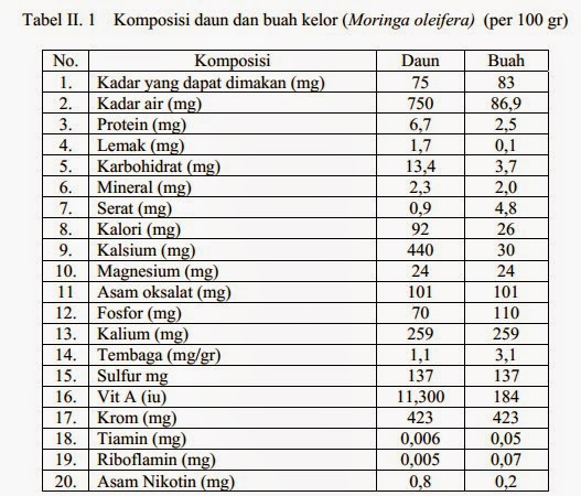 komposisi daun buah kelor moringa oleifera