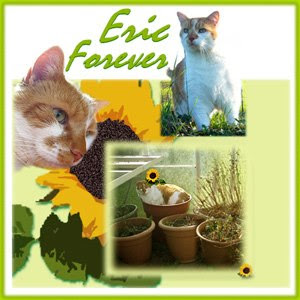 We remember Eric