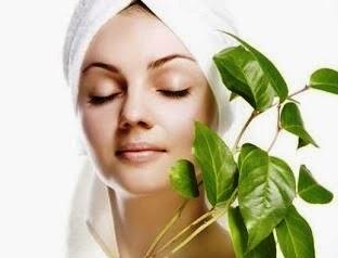 perawatan wajah berjerawat dan berminyak secara alami