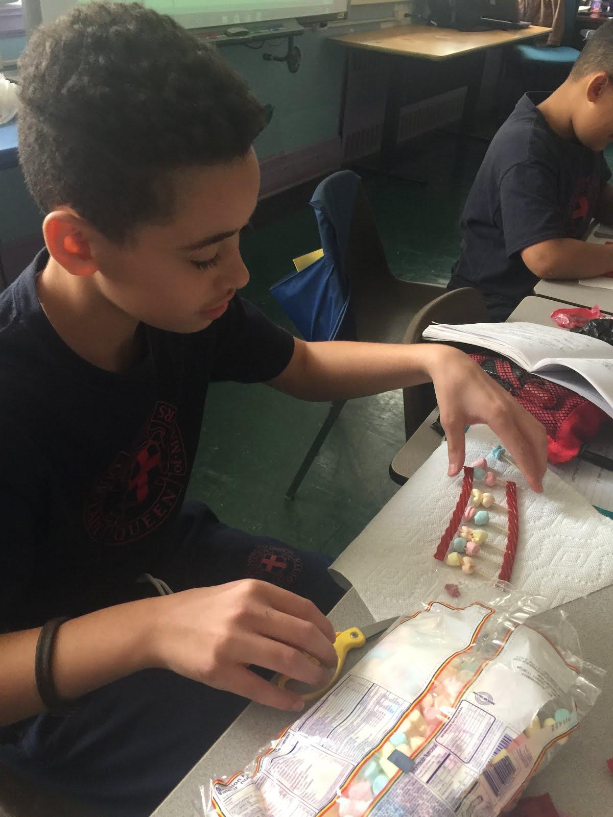Building models of DNA