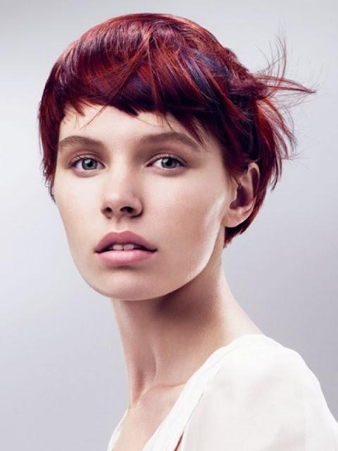 Fashion Hairstyle Fashion Womens Short Hairstyles