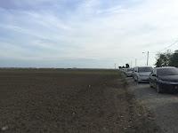 Sekinchan Sky-and-Land Photo