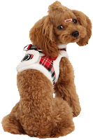Puppia Holiday Harness