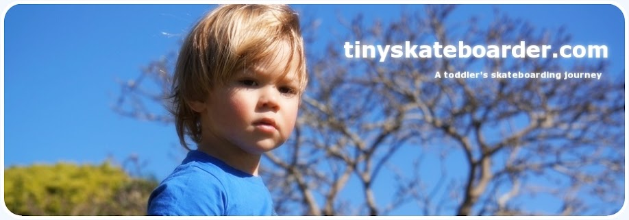 tinyskateboarder.com