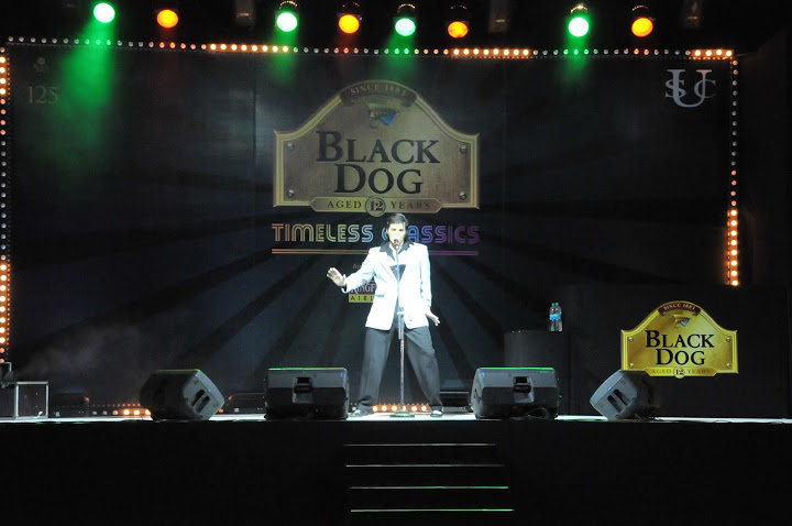 black dog easy evening with black dog tgr