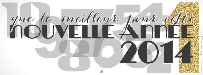 LostBumblebee ©2013 Bonne Année FREE FACEBOOK COVER PHOTO