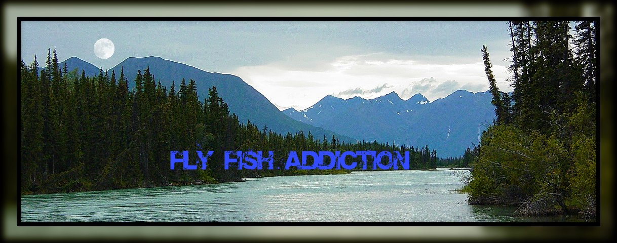 Fly Fish Addiction