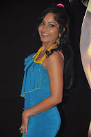 Madhavi Latha at SIIMA Awards 2013 Party Photos