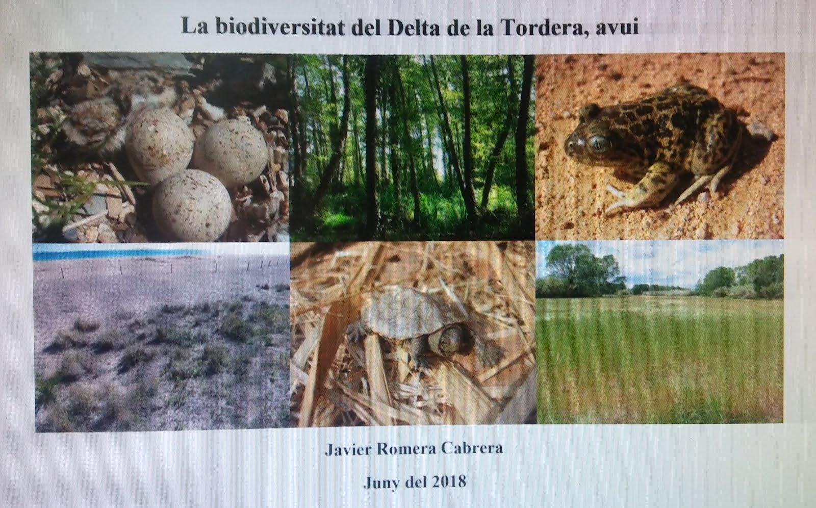 La biodiversitat del Delta de la Tordera, avui
