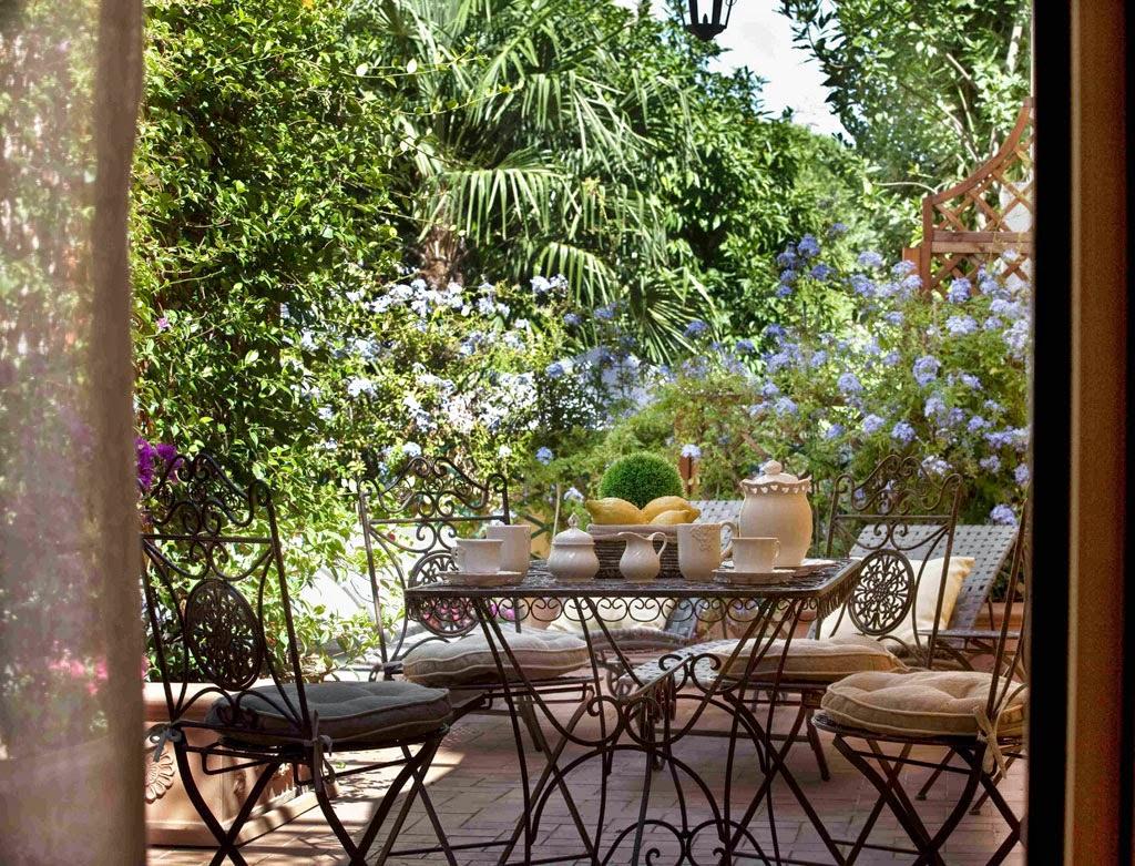 Piante da appartamento sempreverdi: piante da vaso: xanthosoma ...