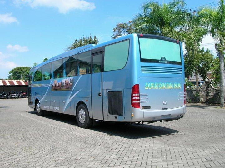 Gambar Bus Safari Dharma Raya