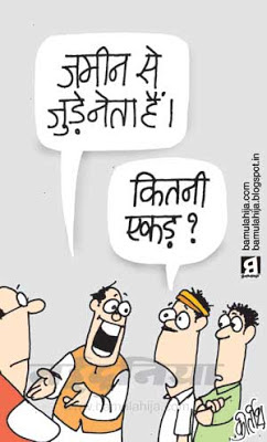 nitin gadkari cartoon, robert vadra cartoon, congress cartoon, bjp cartoon, corruption cartoon, corruption in india, indian political cartoon