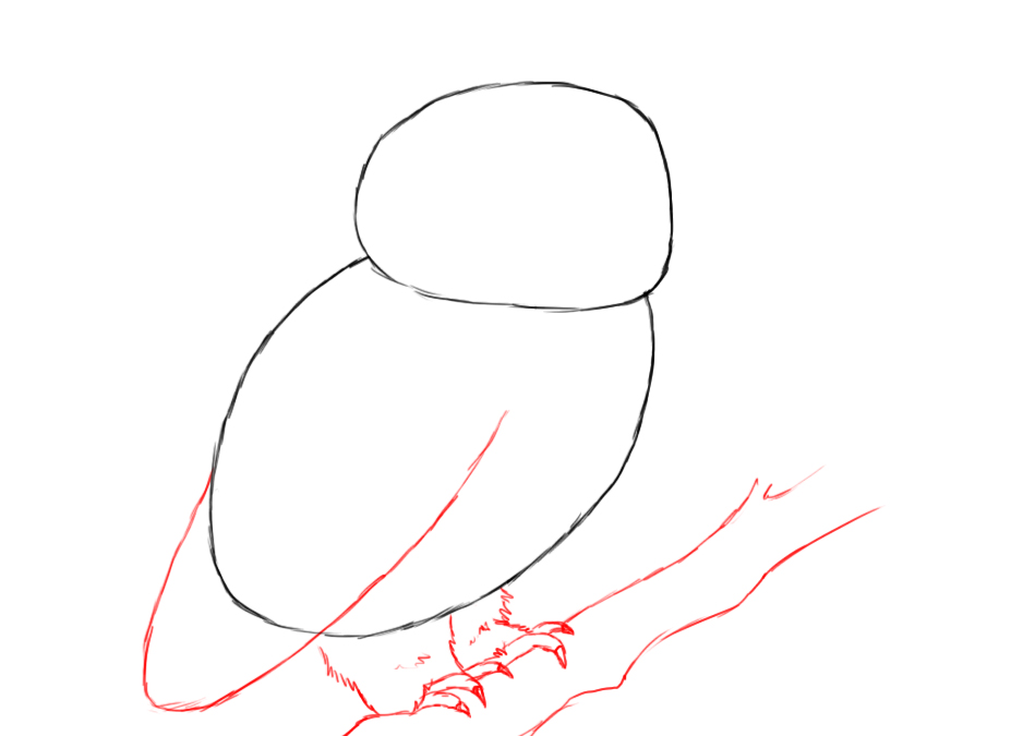 How to draw owl wings for Draw the owl