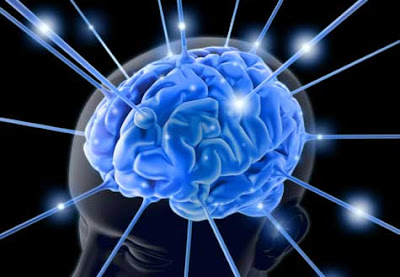 optigenetics-Brain Diseases-Nervous System